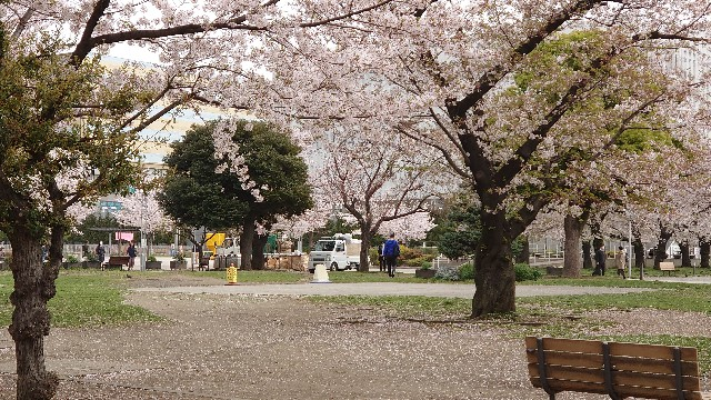 f:id:kiha-gojusan-hyakusan:20210331220042j:image