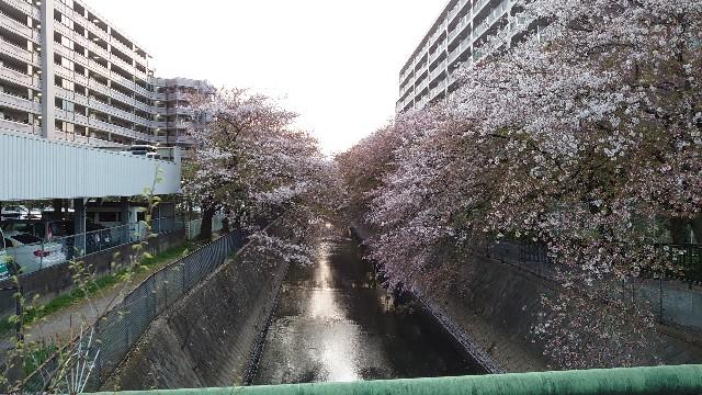 f:id:kiha-gojusan-hyakusan:20210405225821j:image
