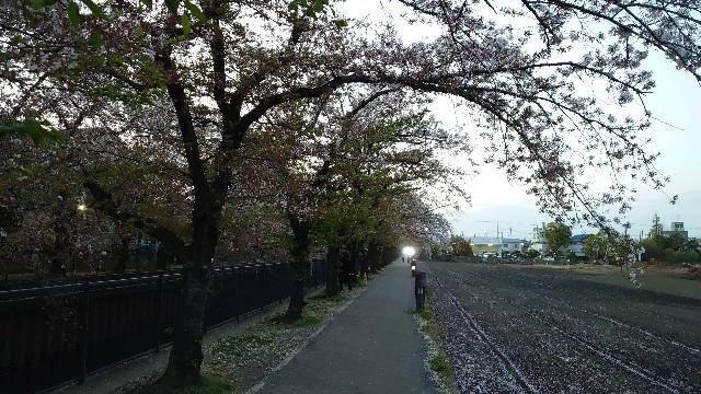 f:id:kiha-gojusan-hyakusan:20210405230341j:image