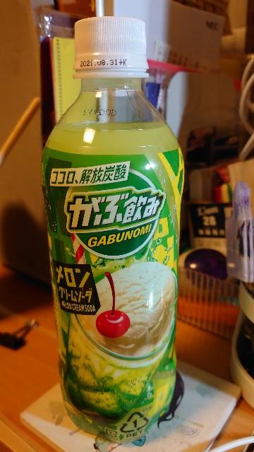 f:id:kiha-gojusan-hyakusan:20210411043011j:image
