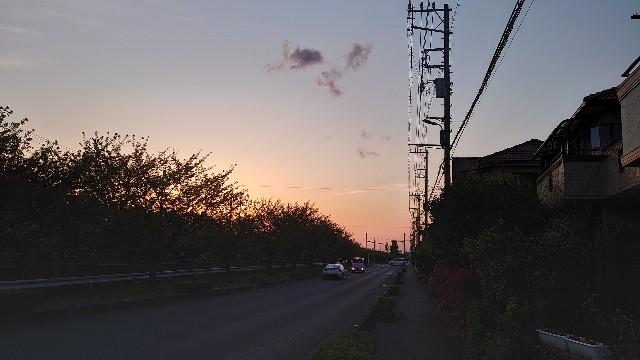 f:id:kiha-gojusan-hyakusan:20210411043719j:image
