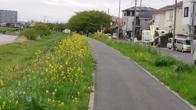 f:id:kiha-gojusan-hyakusan:20210418024727j:image