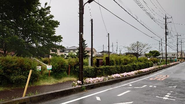 f:id:kiha-gojusan-hyakusan:20210430221425j:image