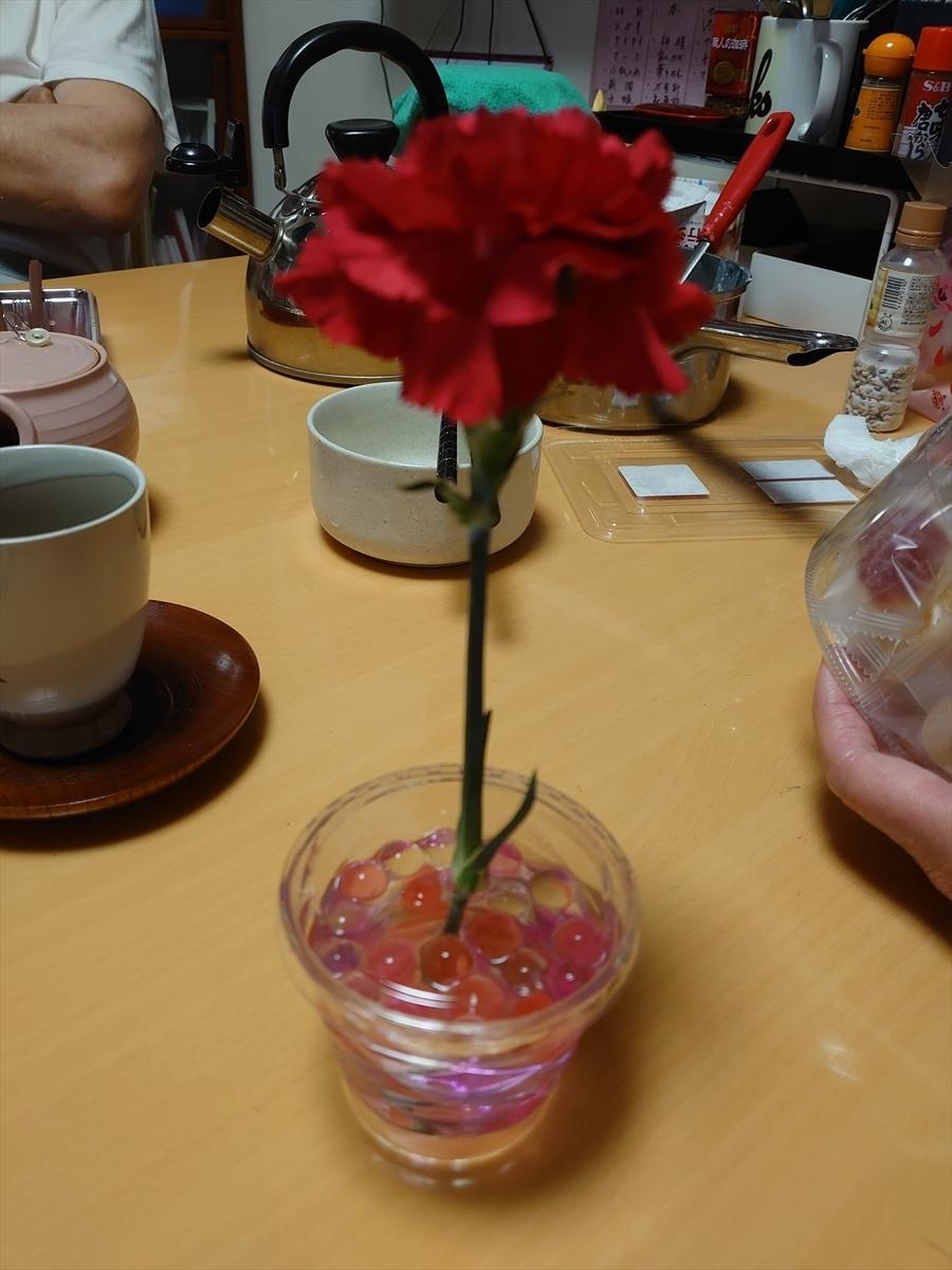 f:id:kiha-gojusan-hyakusan:20210503153022j:plain