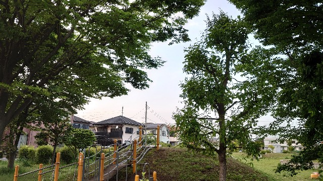 f:id:kiha-gojusan-hyakusan:20210505002925j:image