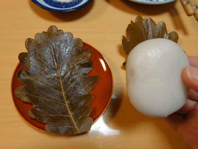 f:id:kiha-gojusan-hyakusan:20210505222415j:image