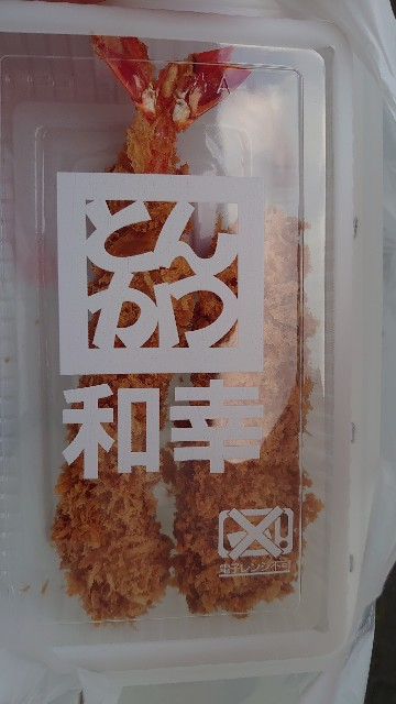 f:id:kiha-gojusan-hyakusan:20210509221336j:image
