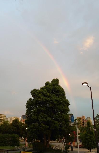 f:id:kiha-gojusan-hyakusan:20210518002957j:image