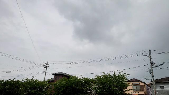 f:id:kiha-gojusan-hyakusan:20210522215917j:image