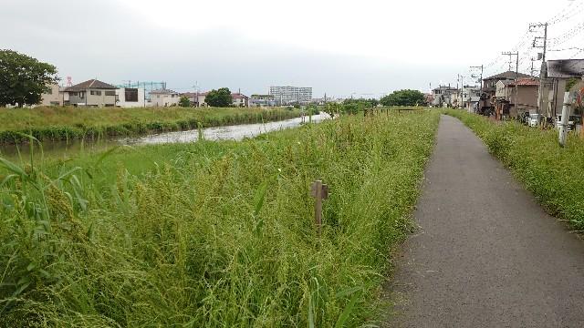 f:id:kiha-gojusan-hyakusan:20210522215951j:image