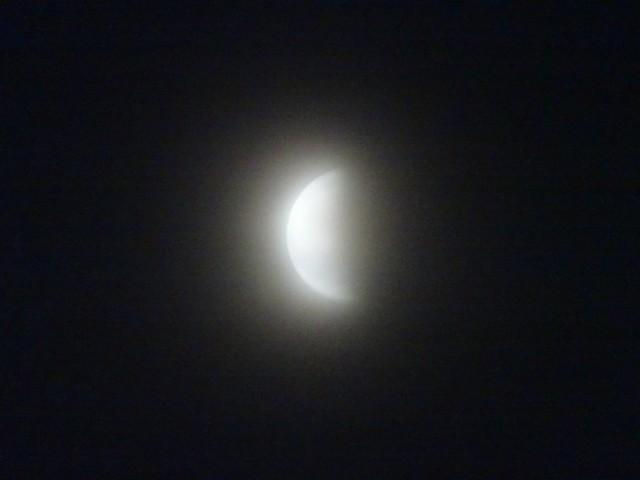 f:id:kiha-gojusan-hyakusan:20210526211728j:image