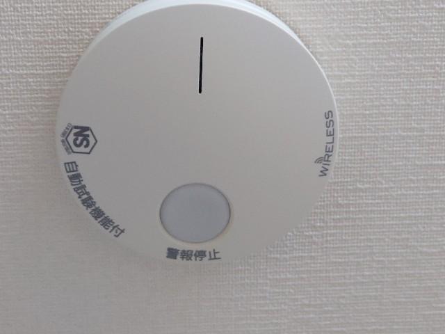 f:id:kiha-gojusan-hyakusan:20210601213518j:image