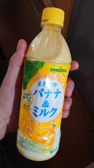 f:id:kiha-gojusan-hyakusan:20210605150636j:image