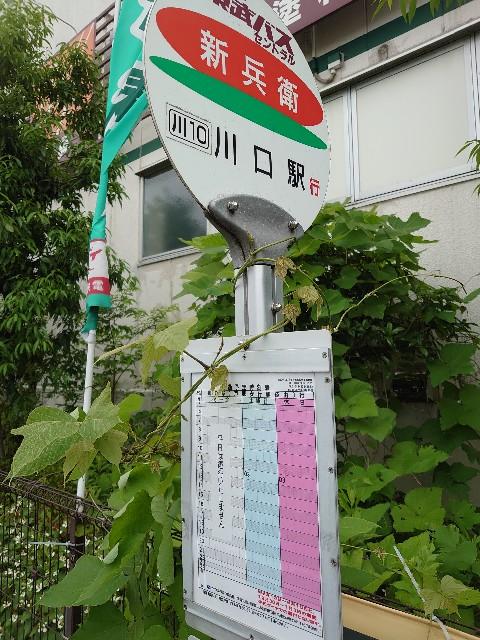 f:id:kiha-gojusan-hyakusan:20210605164825j:image