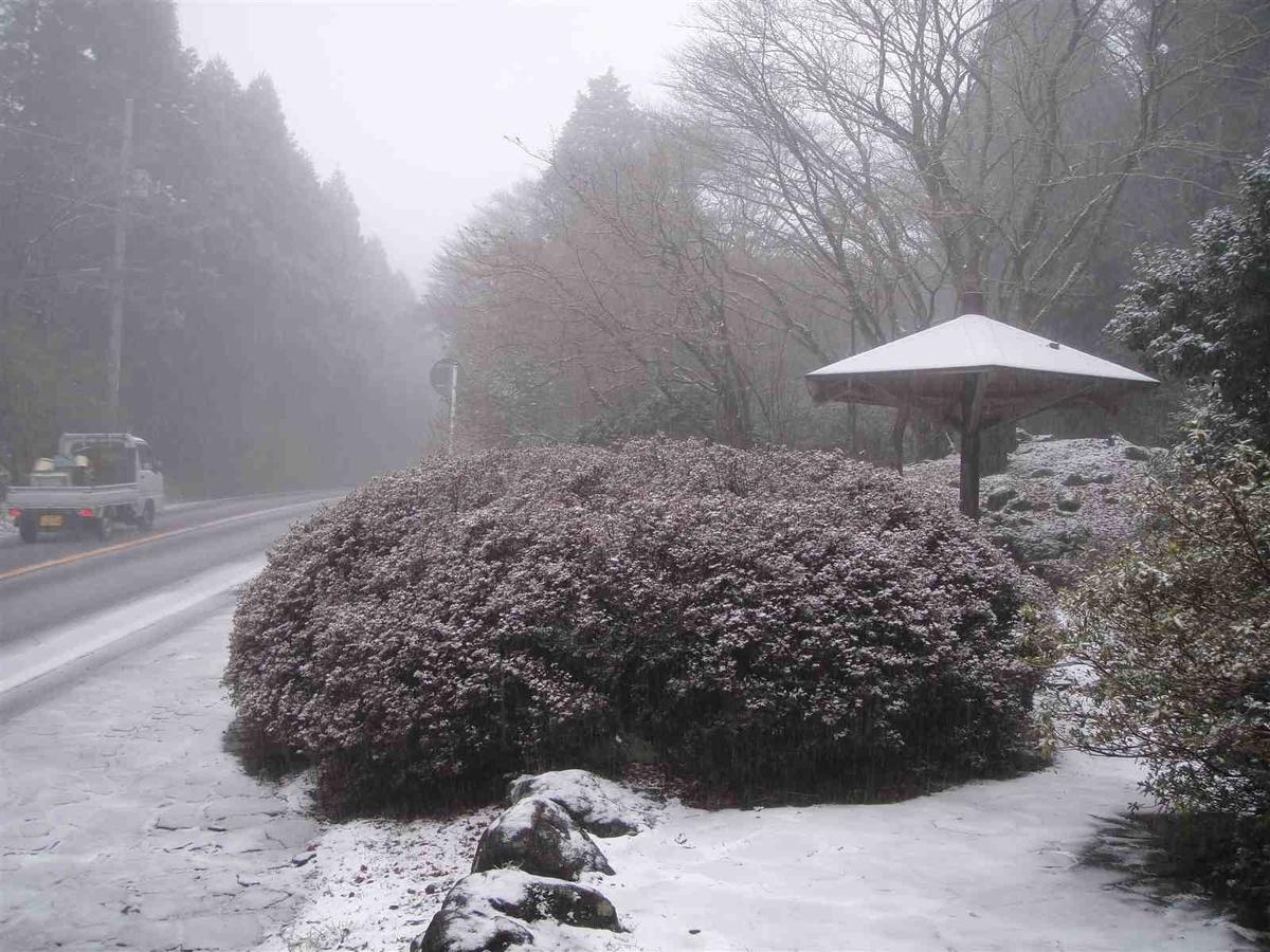 f:id:kiha-gojusan-hyakusan:20210605172401j:plain