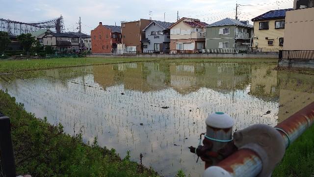 f:id:kiha-gojusan-hyakusan:20210607000833j:image