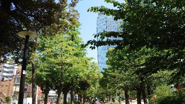 f:id:kiha-gojusan-hyakusan:20210609235843j:image