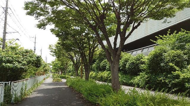 f:id:kiha-gojusan-hyakusan:20210612212146j:image