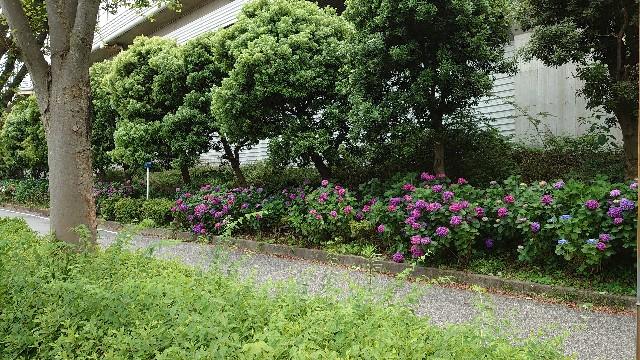 f:id:kiha-gojusan-hyakusan:20210612212230j:image