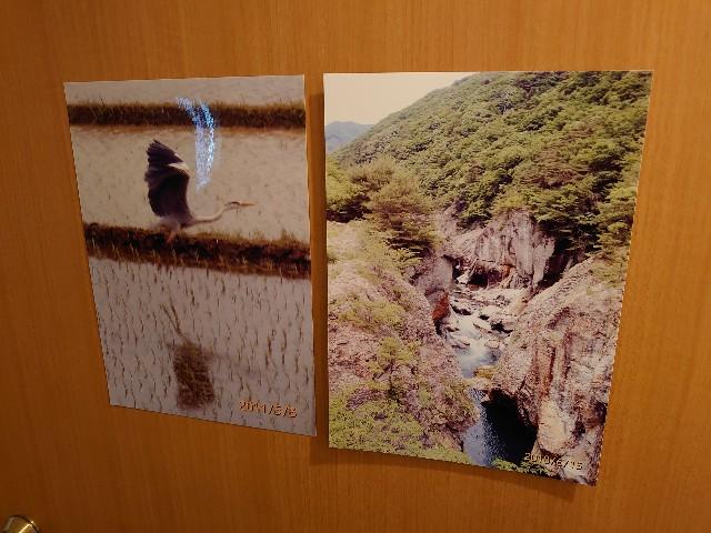 f:id:kiha-gojusan-hyakusan:20210613155125j:image