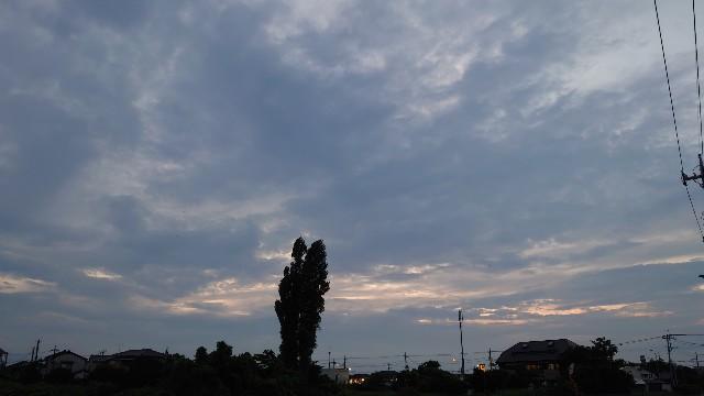 f:id:kiha-gojusan-hyakusan:20210613210522j:image