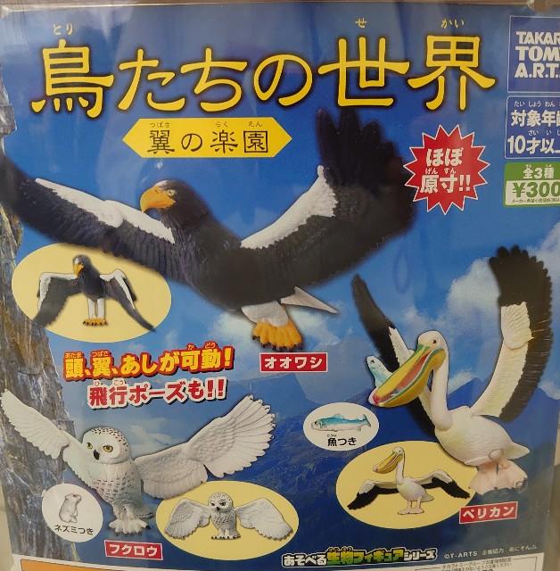 f:id:kiha-gojusan-hyakusan:20210616223131j:image