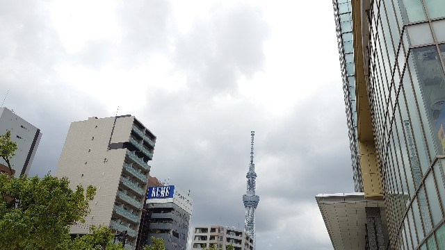 f:id:kiha-gojusan-hyakusan:20210617201314j:image