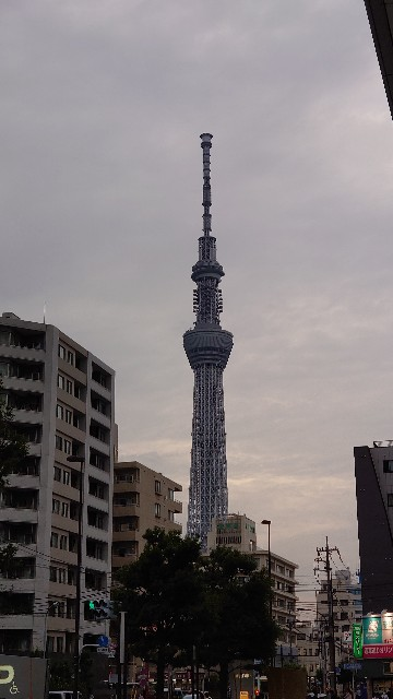 f:id:kiha-gojusan-hyakusan:20210619101251j:image