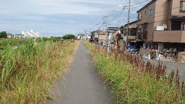 f:id:kiha-gojusan-hyakusan:20210621003003j:image