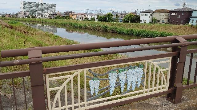 f:id:kiha-gojusan-hyakusan:20210621003027j:image