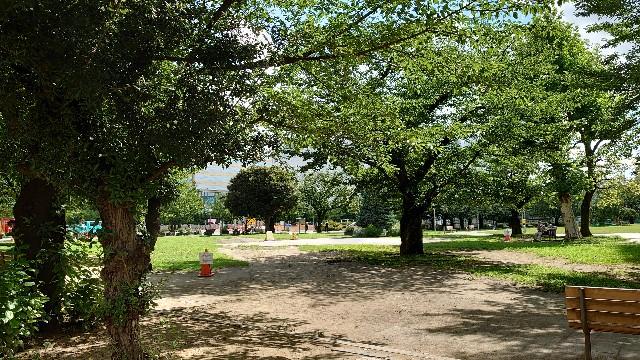 f:id:kiha-gojusan-hyakusan:20210717183901j:image