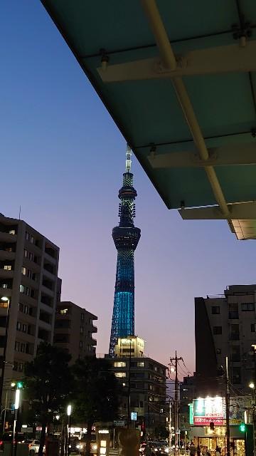 f:id:kiha-gojusan-hyakusan:20210720012134j:image