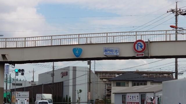 f:id:kiha-gojusan-hyakusan:20210723162829j:image