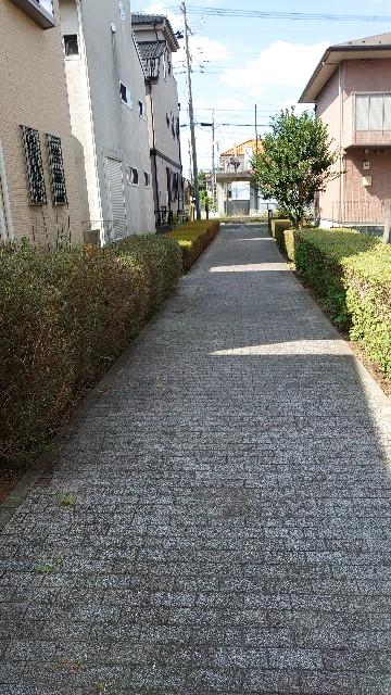 f:id:kiha-gojusan-hyakusan:20210724165513j:image