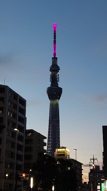 f:id:kiha-gojusan-hyakusan:20210727192306j:image