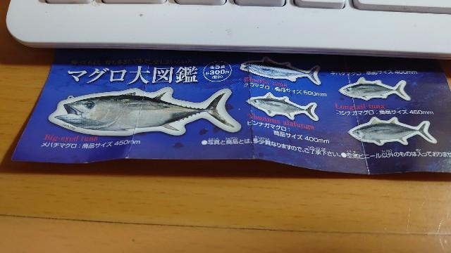 f:id:kiha-gojusan-hyakusan:20210729225539j:image