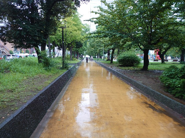 f:id:kiha-gojusan-hyakusan:20210909201351j:image