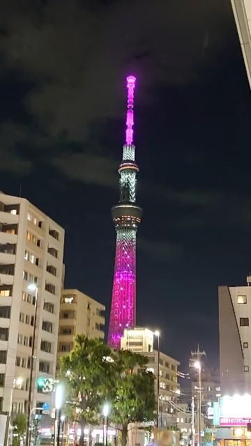 f:id:kiha-gojusan-hyakusan:20210922225107j:image