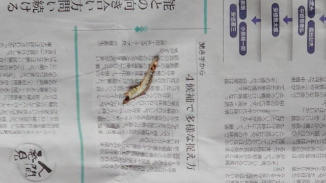 f:id:kiha-gojusan-hyakusan:20210926143830j:image