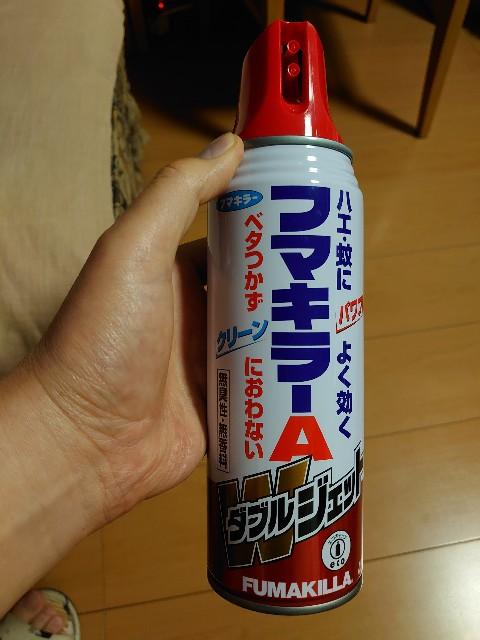 f:id:kiha-gojusan-hyakusan:20210926203647j:image