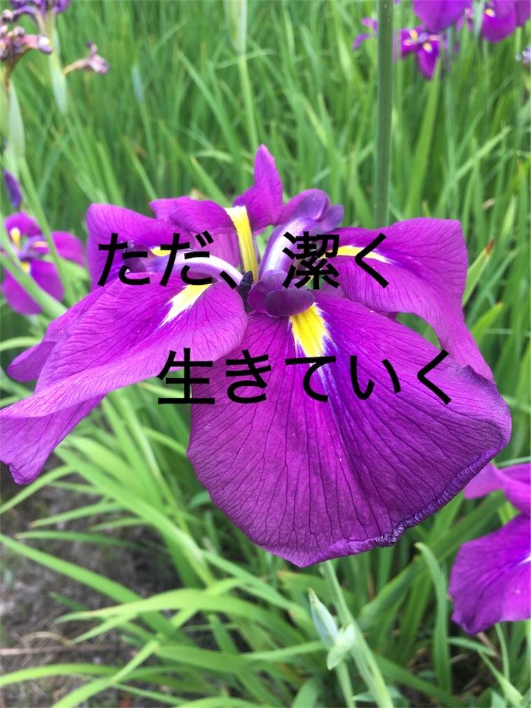 f:id:kiir0w0:20180923181024j:image