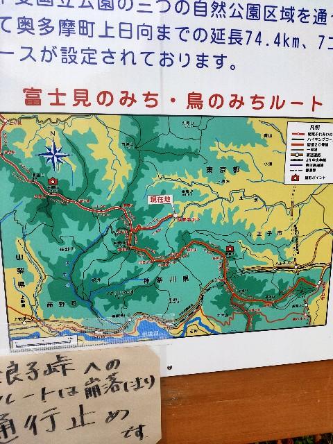 f:id:kiiroidaruma:20200703112201j:image