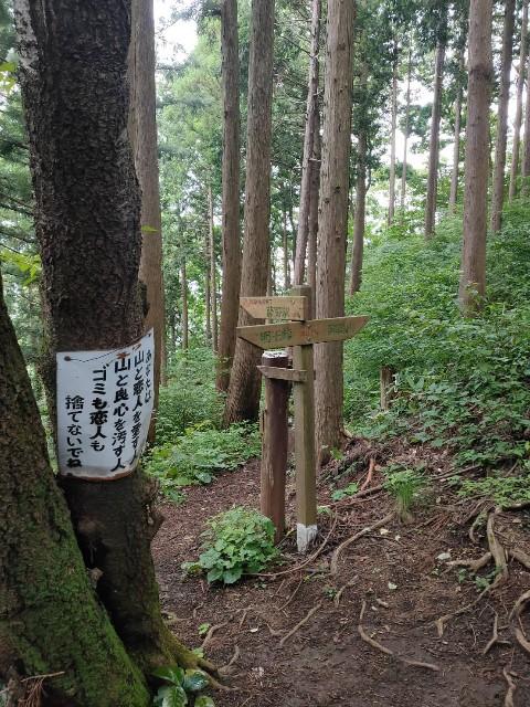 f:id:kiiroidaruma:20200704094925j:image