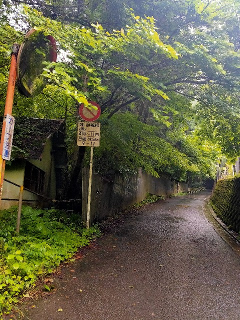 f:id:kiiroidaruma:20200704103939j:image