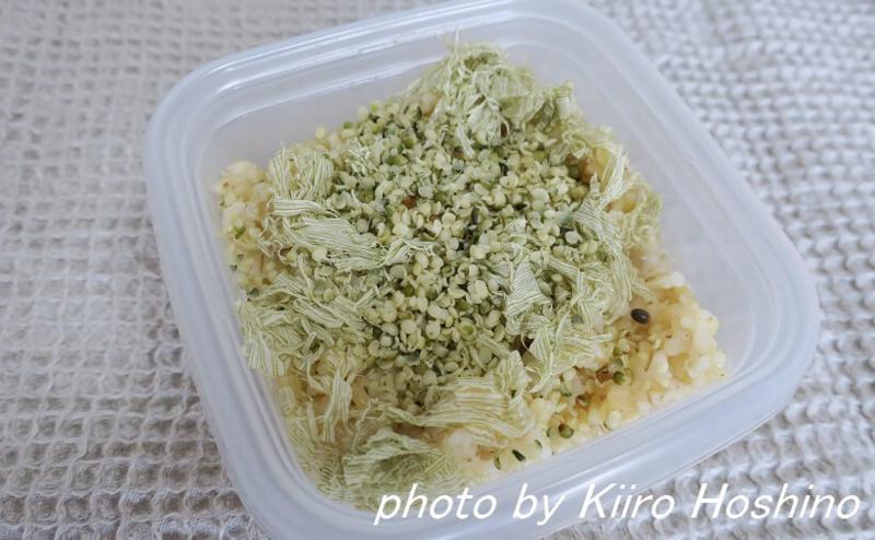 f:id:kiiroihoshi:20160617135831j:plain
