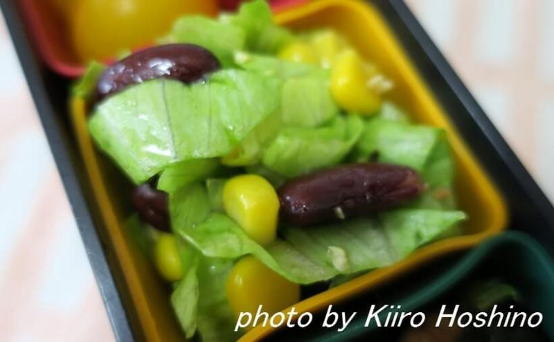 f:id:kiiroihoshi:20160628084323j:plain