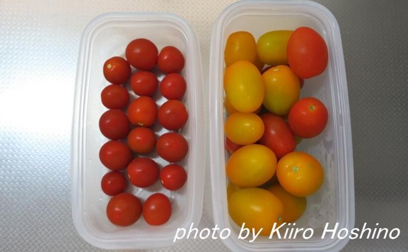 f:id:kiiroihoshi:20160712052636j:plain