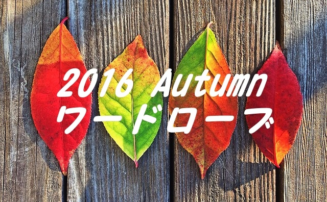 2016秋ワードローブ by pixabay