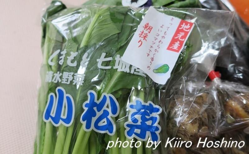 ふるさと納税・菊池市、朝採れ小松菜