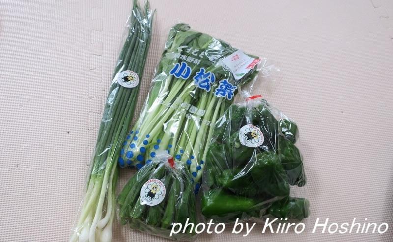 ふるさと納税・菊池市、緑色野菜